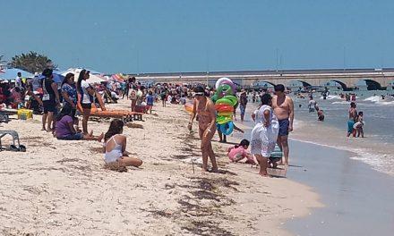 Oleada de turistas en la costa yucateca (Vídeo)
