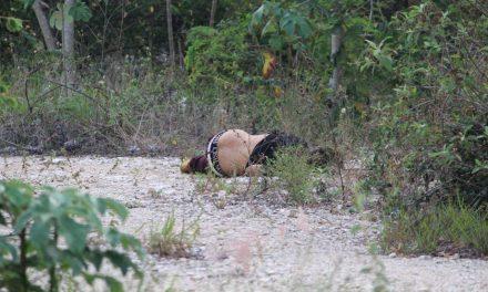 Con 4 ejecutados empieza el sábado en Playa del Carmen