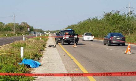 Cadáver de mujer en carretera Mérida-Motul ¿Atropellada? (Vídeo)