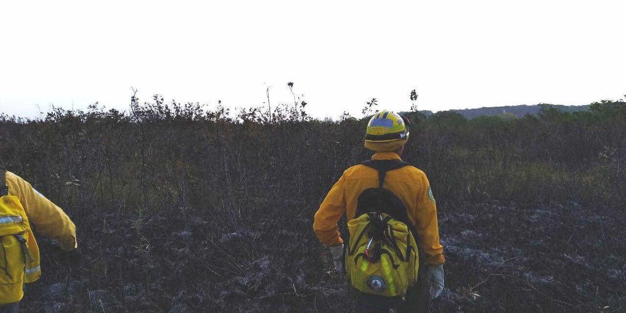 Calentamiento global relacionado con más incendios forestales