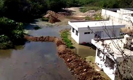 Aún en mitigación daño por aguas negras en 'Cielo Alto'