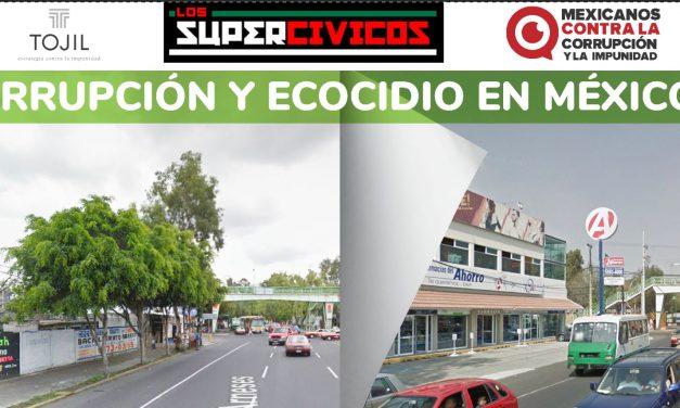Exhiben a Farmacias del Ahorro por tala ilegal en Yucatán y otros estados