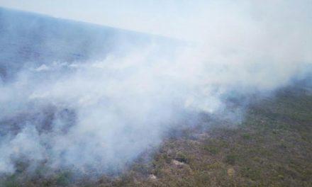 Identifican como prioridad atención a incendio en municipio de Tetiz