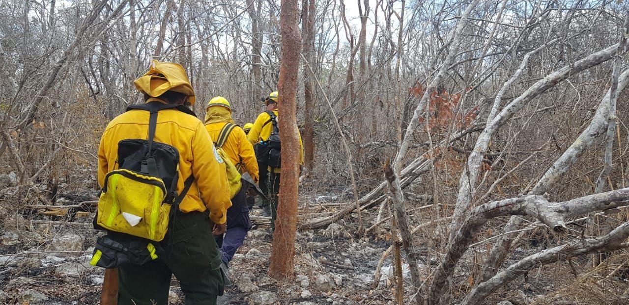 Reportan bajo control incendios en ejido Nohuayún, municipio de Tetiz
