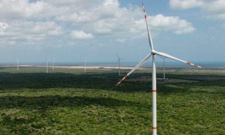 Dzilam, primer parque de energía limpia en Península Yucatán (Vídeos)