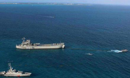 Reparten tareas para combatir sargazo en Caribe Mexicano