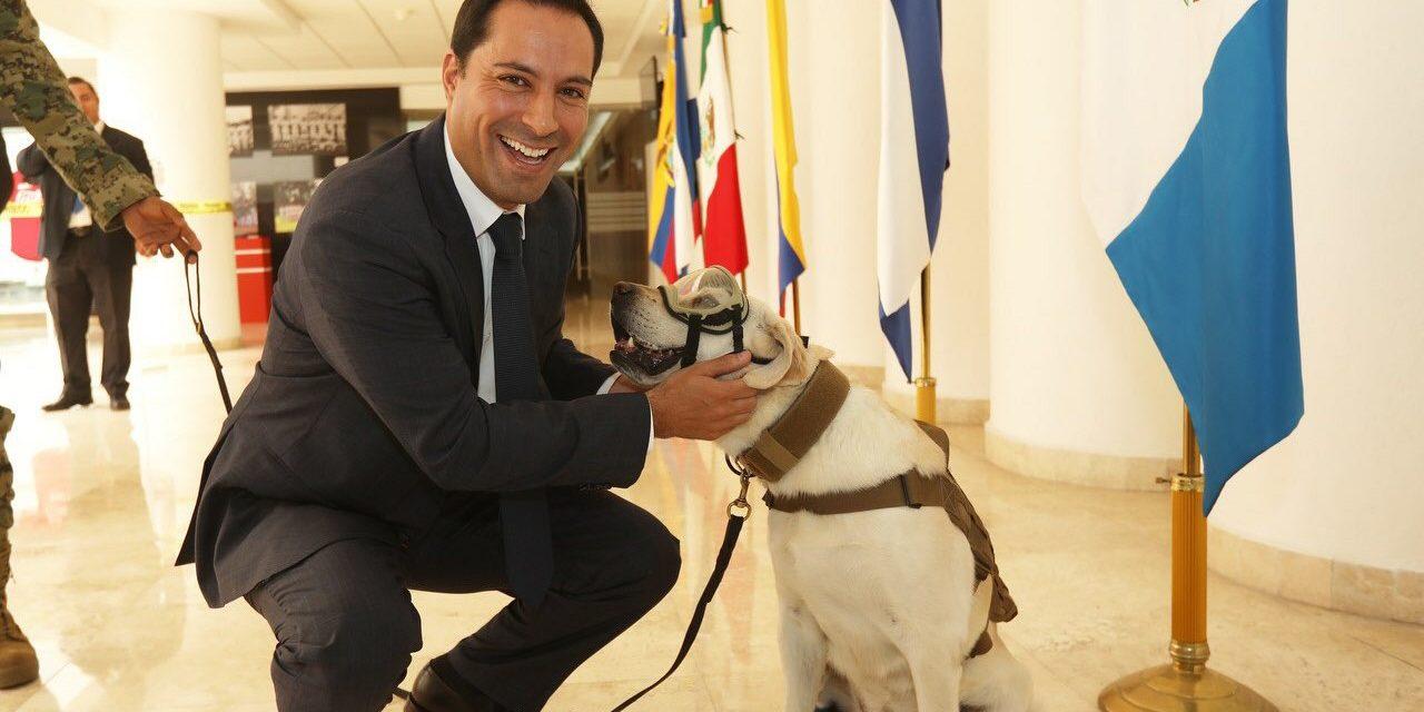 """Vila conoció a """"Frida"""", rescatista canina del sismo del 19S"""
