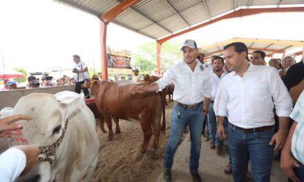 'Veterinario en tu rancho', nuevo apoyo a pequeños ganaderos