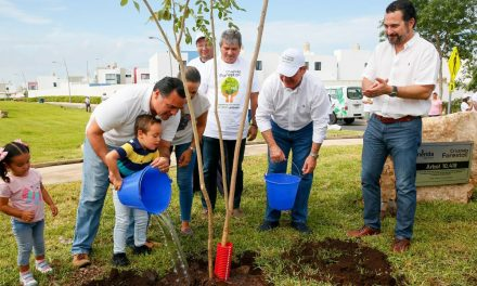 Cruzada Forestal 2019 en Mérida cierra con récord de árboles sembrados