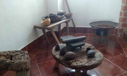 Cultiva y procesa cacao orgánico con miras a exportación