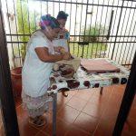 La maya, de las lenguas vivas en riesgo