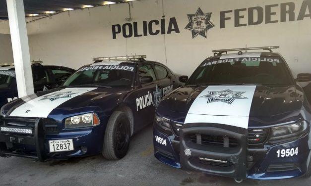 Interceptados en Mérida hondureños con identificaciones falsas