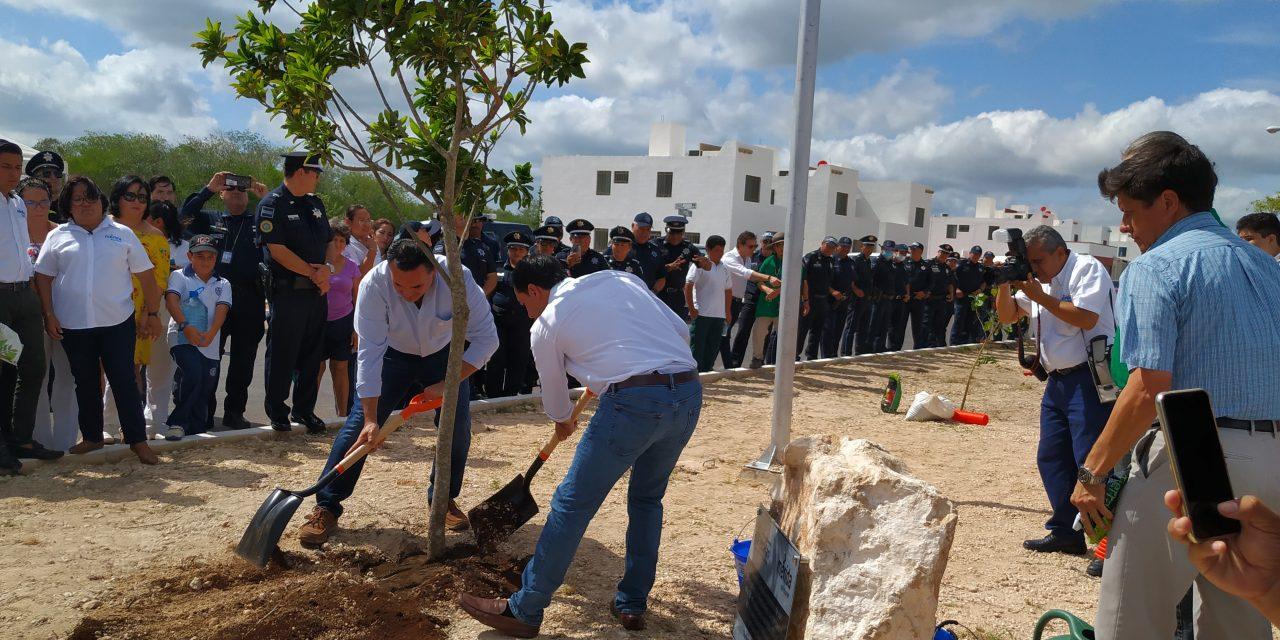 Quienes siembren árboles en Mérida pagarán menos predial