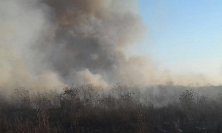 Finaliza temporada de quemas en Yucatán