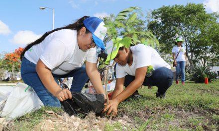 Ciudadanos plantan árboles en fraccionamiento Los Héroes