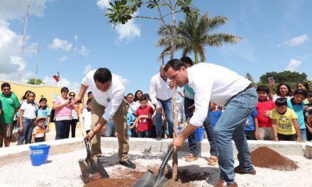 'Arborizando Yucatán' sembrará 600 mil plantas en 105 municipios