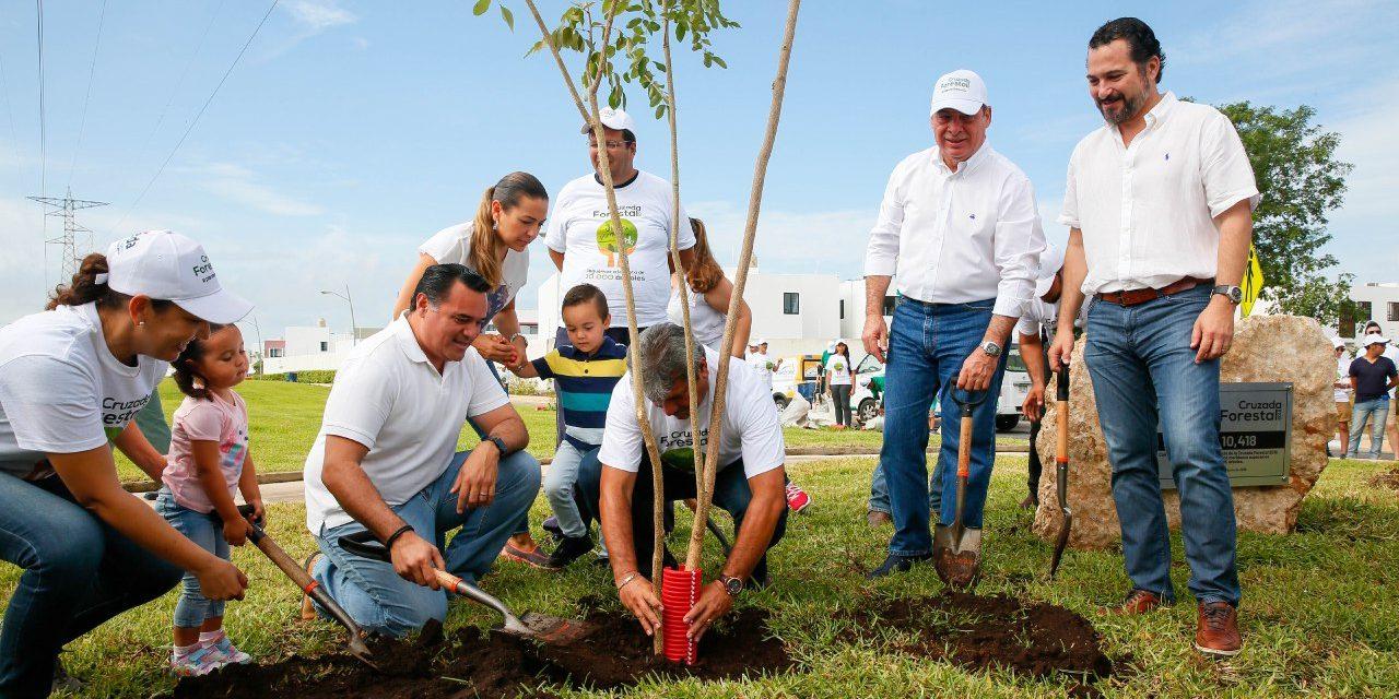 Arborización y mantenimiento de árboles, trabajo permanente de Ayuntamiento Mérida.- Renán Barrera