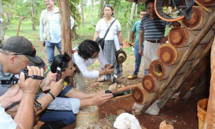 Intercambio de experiencias sobre apicultura maya y maorí