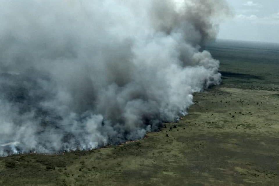 Afecta incendio 600 hectáreas en biosfera Sian Ka'an, Quintana Roo
