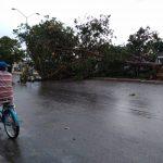 Violento chubasco sorprende en Mérida; caen granizo y árboles (Video)