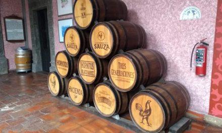 Auge y creciente presencia del tequila en México y el extranjero (Video)