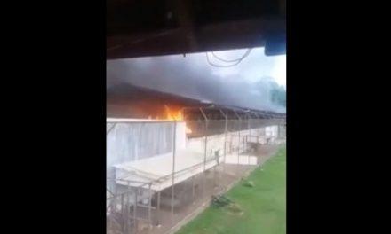 Un motín en una cárcel de Brasil deja al menos 52 muertos
