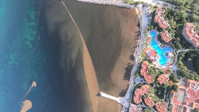 Oleada de sargazo alcanza más playas del Caribe Mexicano