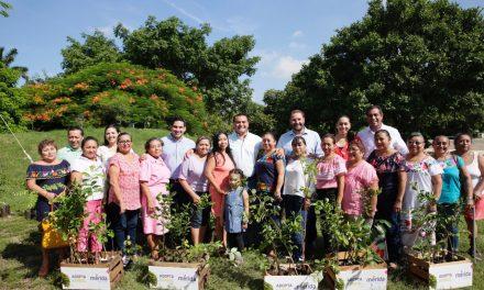 Consejos de Participación Ciudadana entran a arborización en Mérida
