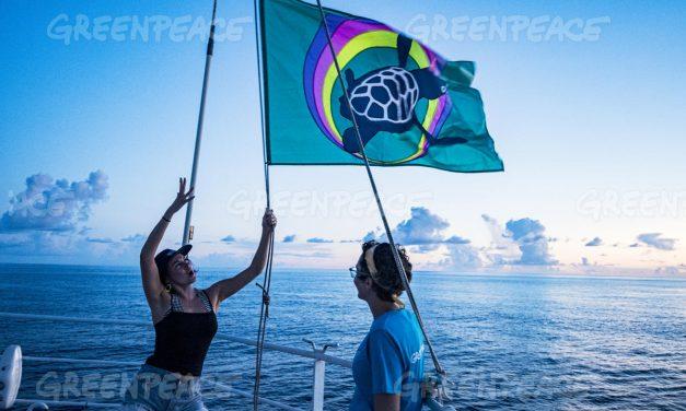 Unen talentos Manolo Caro y Pedro Alonso para apoyar campaña de Greenpeace