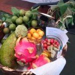Viene Encuentro Culinario de frutos no convencionales y flores comestibles