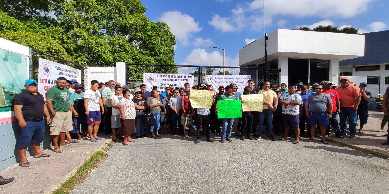 Pescadores yucatecos y comercializadores comienzan a presionar (Video)