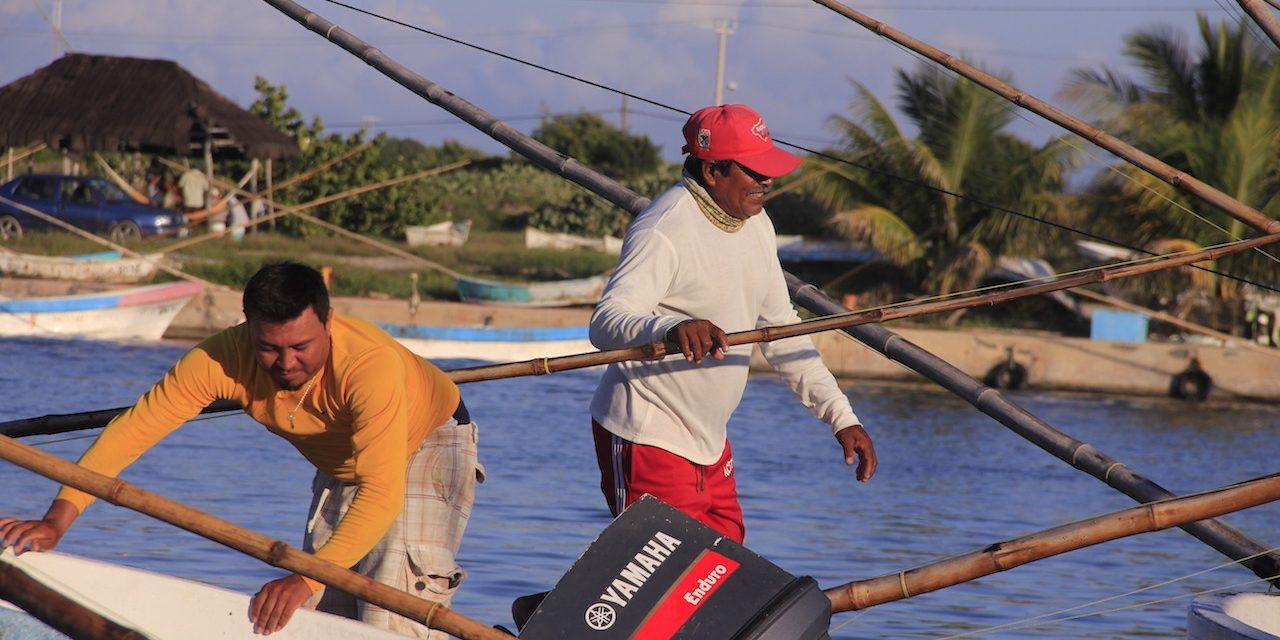 """Al borde del """"caos"""" sector pesquero de Yucatán (Video)"""