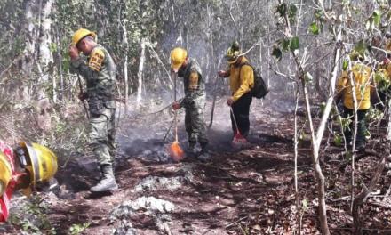 Segundo incendio en Reserva de la Biosfera Sian Ka'an sigue avanzando