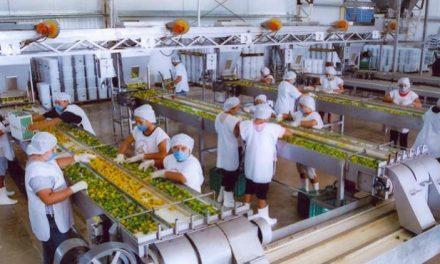 Crecimiento económico superior de Yucatán que resto de estados del país