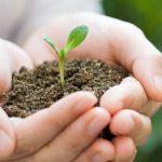 Estancamiento, una forma de atraso, en políticas ambientales.- AMIA