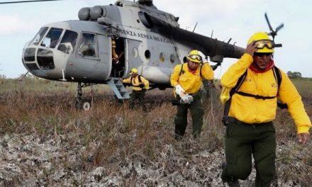 """Dañó mil 600 hectáreas incendio """"Uaimil"""" en Sian Ka'an"""