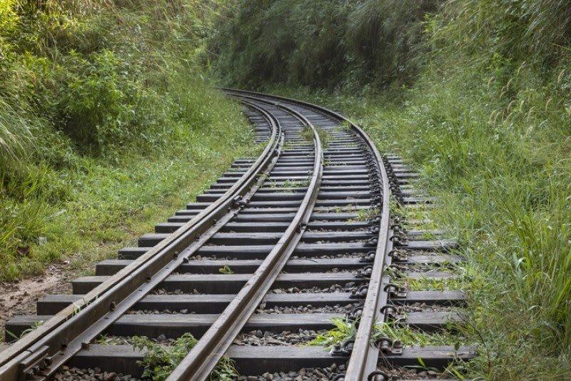 Defiende Sectur sustentabilidad de Tren Maya y niega efectos nocivos