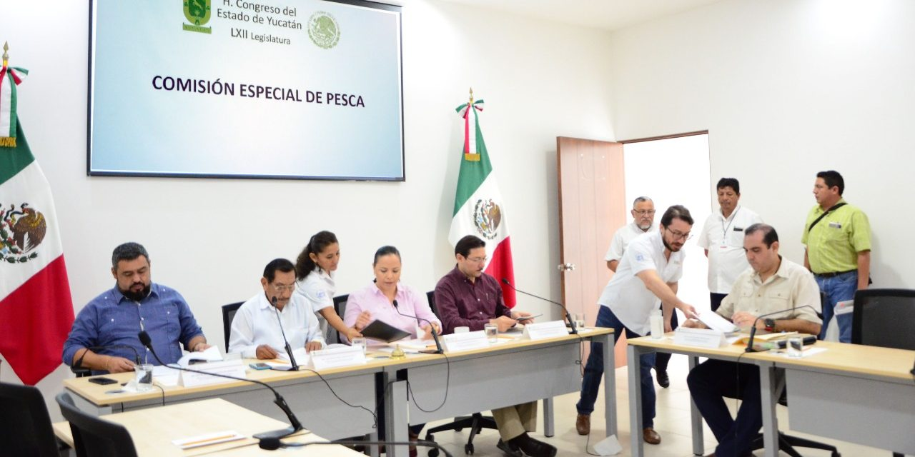 Presentan Plan de Trabajo de comisión de Pesca
