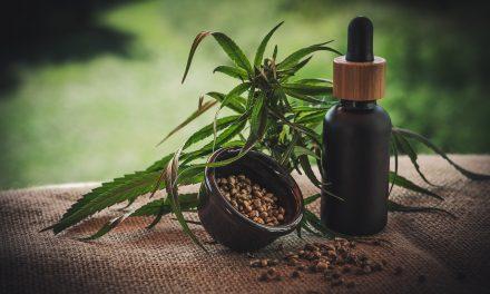 Marihuana, en fase definitoria para uso terapéutico y medicinal en el país