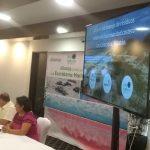 Basura amenaza anidación y eclosión de tortugas marinas