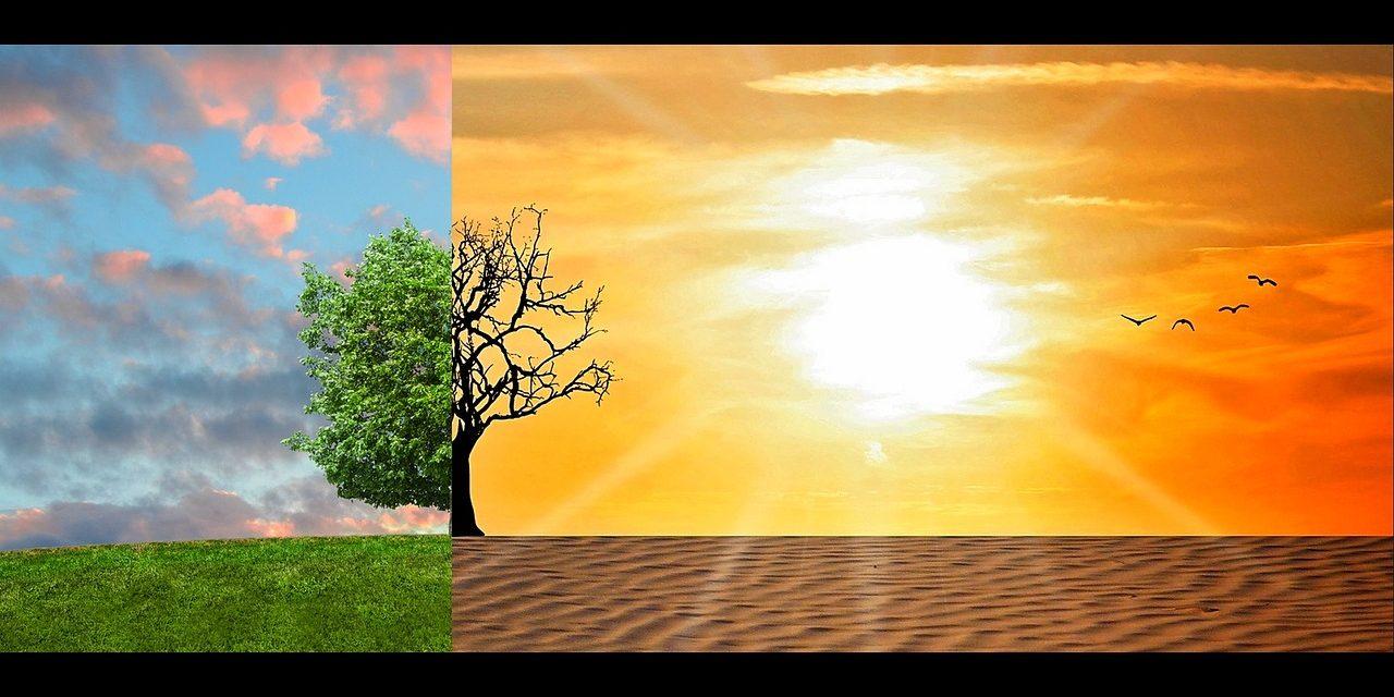 Aumento en temperaturas globales incide en problemas de salud mental