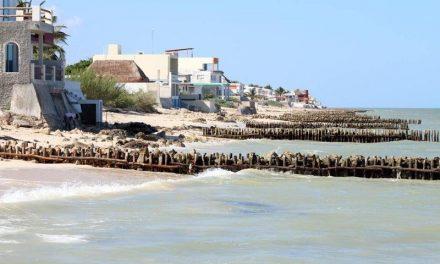 Erosión y basura en 80 kilómetros de costas yucatecas