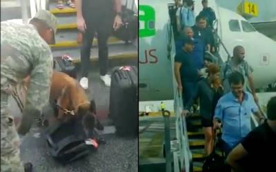 Falsa amenaza de bomba activa protocolos de seguridad en Aeropuerto de Cancún
