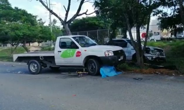 Libra atropellamiento de camioneta, pero no de estaquitas y muere (Video)