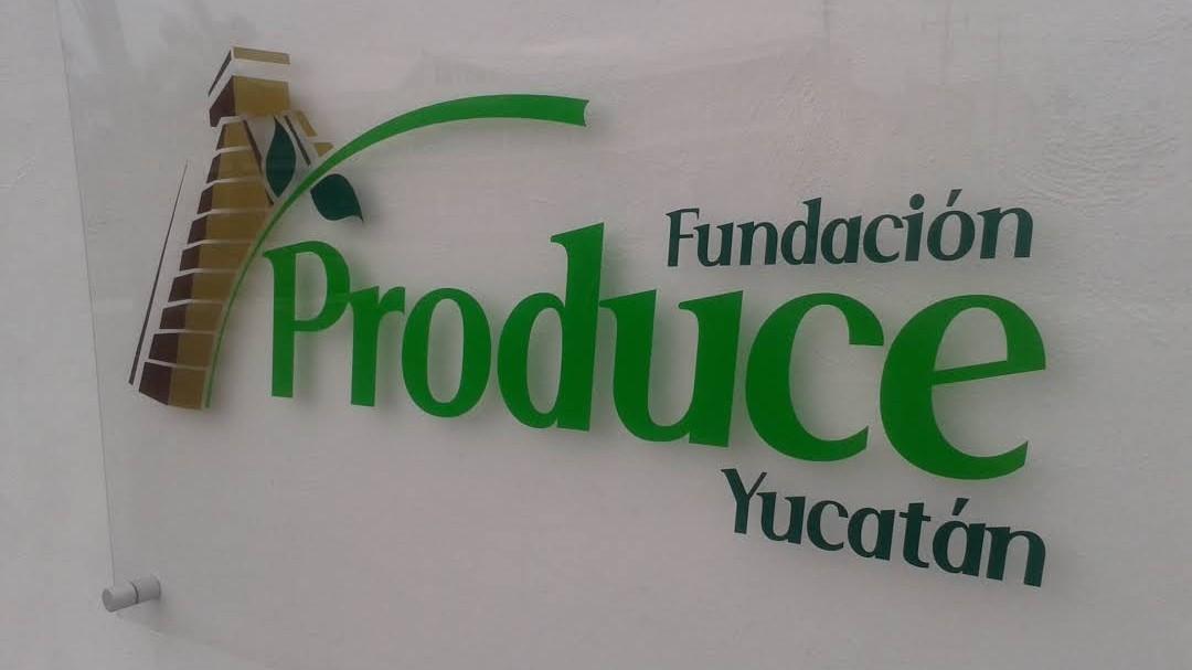 Cambio en Fundación Produce Yucatán; asume Mario Manuel Mena Godoy