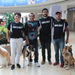 'Perrotón Mérida 2019', convivencia con mascotas