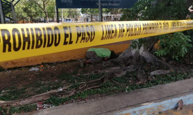 Camino a la tienda encuentran cadáver junto a cancha pública