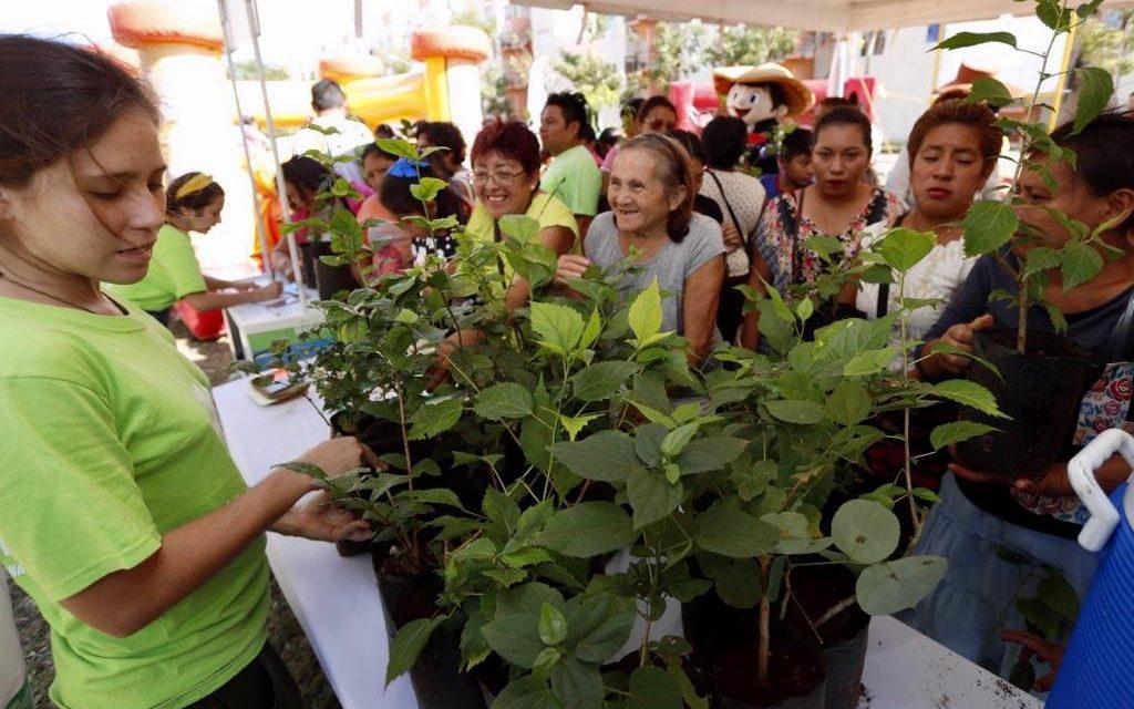 """Tercer """"Mega Punto Verde"""", en fraccionamiento San Marcos Sustentable"""