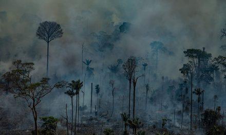 Contribuirán yucatecos a restauración simbólica en Amazonas