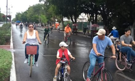 Domingo húmedo, por lloviznas, en Mérida (Video)